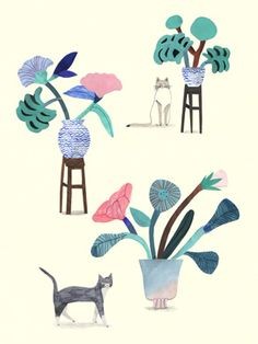 The ideal artwork for cat and plant-lovers. Cats and plants illustration art print by Laura Kientzler. Cats and plants poster can be purchased at L'Affiche Moderne Art Floral, Cat Plants, Art Et Illustration, You Draw, Art Design, Cat Art, Oeuvre D'art, Illustrations Posters, Flower Art