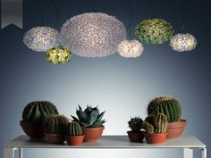 A divine cluster of Bloom lights by Ferruccio Laviani for #Kartell. Gorgeous!