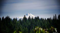'Mt. Ashland' -  Oregon
