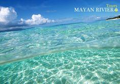 This April 22 do not contaminate, plant a tree, turn off a light, do not waste water, recycle. Let's take care of our planet! _______________ Día de la Tierra Este 22 de abril no contamines, planta un árbol, apaga una luz, no derroches agua, recicla. ¡Cuidemos nuestro planeta!  www.mayanrivieratour.com  #DiadelaTierra #Recicla #Cuidemosnuestroplaneta #Tours #Excursiones #RivieraMaya #Cancun #PlayadelCarmen #Caribe #Mexico
