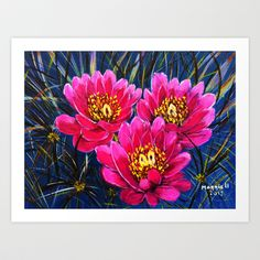 Cactus flowers ( Close up) Art Print by maggs326 - $15.60