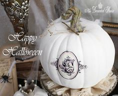Painted White Pumpkin using Annie Sloan Chalk Paint with paper clay stem. by The Decorated House