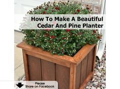 How To Make A Beautiful Cedar And Pine Planter - www.hometipsworld...