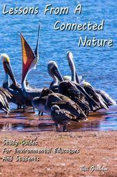 Inviting All Environmental Educators Science Education, Curiosity, Environment, Notebook, Nature, Free, Naturaleza, Nature Illustration, The Notebook