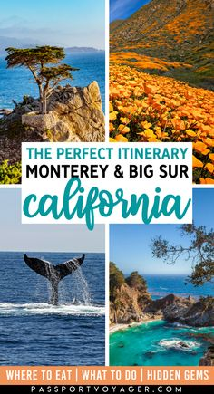 The Perfect Itinerary For Big Sur & Monterey California You NEED To Save! - Visiting Big Sur and Monterey, California is on so many travelers' bucket lists – and for good - California Travel Guide, Usa Travel Guide, Travel Usa, Travel Guides, Travel Tips, Cool Places To Visit, Places To Travel, Travel Destinations, Places To Go