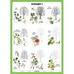 Stromy I., 100 x 140 DUO (+20 A5)