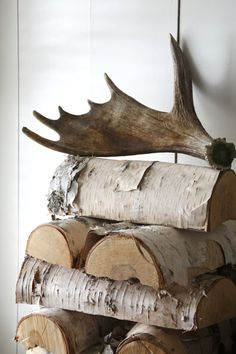 Neatly stacked firewood w/Antler Topper :: Rustic