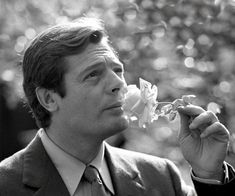Picture of Marcello Mastroianni Marcello Mastroianni, Italy Pictures, Old Pictures, Alain Delon, Catherine Deneuve, Iconic Movies, Sophia Loren, Horror Films, Italian Style