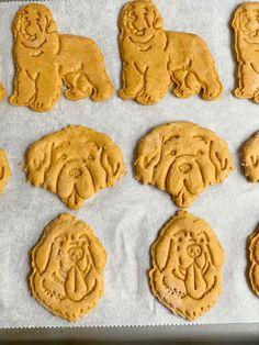 Tasty Peanut Butter and Pumpkin Dog Treats