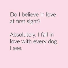 love at first sight dog quote - Google Search