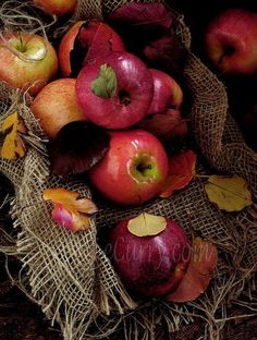 Apples and burlap. So country.