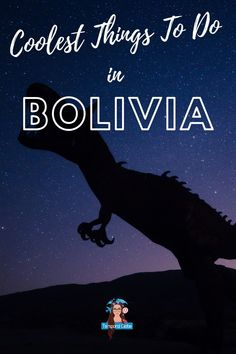 Bolivia Salt Flats, Bolivia Travel, Lake Titicaca, Travel Things, White City, Solo Travel, Travel Around, Travel Guides, South America