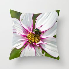 Dogbane Beetle Eating Flower Throw Pillow by Photography By MsJudi - $20.00
