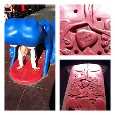 The inside of the hippo in the City playground, has the heart, lungs etc displayed on the floor in English, French, Spanish and Braille!