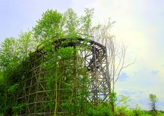 . We'll Always Have Chippewa  The trees of Chippewa Park gradually consume the Big Dipper coaster, idled since the park closed in 1978.    Explored