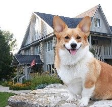 Door Peninsula, Wisconsin Pet-Friendly Hotels, Dog-Friendly Restaurants, Dog Parks and Travel Guide