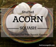 Do you have a bumper crop of acorn squash or just love the taste? Here are 15 recipes for amazing stuffed acorn squash!