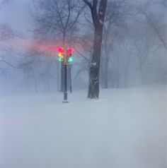 The photographer Jan Staller's images capture those brief moments when the snow still lies unsullied on New York city streets and park meadows.