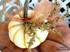 decorating with white pumpkins for wedding | Look at that cute little baby pumpkin sitting on the mama pumpkin.
