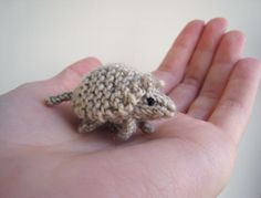 Tiny  Crocheted Armadillo for a certain dorm mate