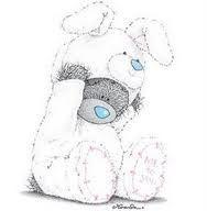 verkleed teddy