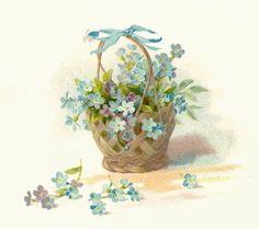 Antique Images: Free Vintage Flower Graphic: Blue Forget-Me-Not Flowers from Vintage Wedding Book with Basket Graphic Art Vintage, Vintage Ephemera, Vintage Cards, Vintage Paper, Vintage Images, Flower Graphic, Forget Me Not, Wedding Scrapbook, Flower Images