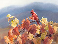 """Cardinal & Fall Grapes"" - by Susan Bourdet"