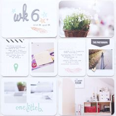 Love this white cardstock background!!! week 6 by magda_m at @Studio_Calico