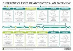 Major Classes of Antibiotics Summary. Click 'visit site' to read more detail and download.