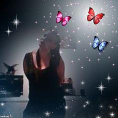 Butterflies - **Queenie**