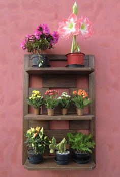 Jardim Vertical Girassol - Nogueira - Prateleiras de Parede - Meu Móvel de Madeira