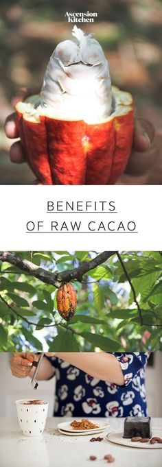 Nutrition & Health Benefits of Cacao: learn how raw cacao differs from cocoa & why cacao is so beneficial. Plant Based Nutrition, Nutrition Tips, Health And Nutrition, Raw Cacao Nibs, Raw Cacao Powder, Healthy Diet Tips, Healthy Choices, Cacao Powder Benefits, Most Nutritious Foods