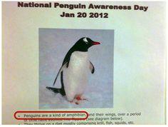 FAIL Nation: Penguin Awareness FAIL