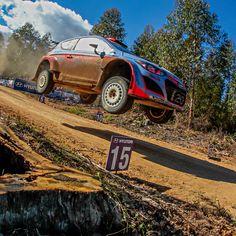 2015 #WRC #호주 랠리 i20! 본능적이고 거친 레이스를 하는 WRC! #Australia #Rally #Hyundai #i20 WRC Action! There are instinctive and wild races in WRC!