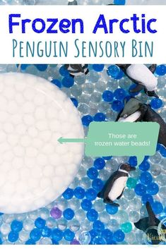 This penguin sensory bin uses water beads as a base, some of them frozen, for fun Winter sensory play for kids. Great for school or home. Animal Activities, Sensory Activities, Winter Activities, Activities For Kids, Preschool Winter, Indoor Activities, Classroom Activities, Sensory Bins, Sensory Play