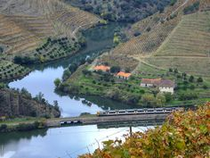 Rio Douro Douro is our supreme inspiration #douro #douroriver #portugal #ilovedouro #dvineskin