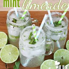 Limeade With A Touch Of Mint Recipe — Dishmaps