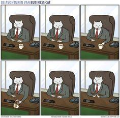 Business Cat - Koffie