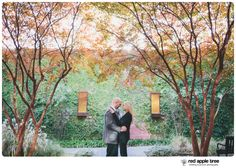 red apple tree photography: Charlotte, NC Engagement with Bobby + Jenna
