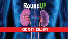 A new study finds that the epidemic of fatal kidney disease afflicting populations exposed to GM farming practices in Sri Lanka is real and not just hypothetical.