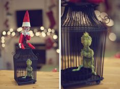 Elf on the Shelf, Day 12 | Snippets from Suburbia