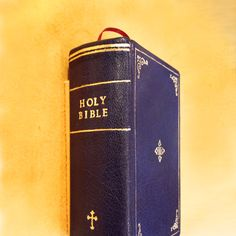 purple leather bible, gold print