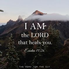 """He said, """"If you listen carefully to the LORD your God and do what is right in his eyes, if you pay attention to his commands and keep all his decrees, I will not bring on you any of the diseases I brought on the Egyptians, for I am the LORD, who heals you."""" Exodus 15:26"""