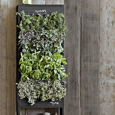 LOVELY! Free Standing Vertical Chalkboard Garden by Williams-Sonoma   #flowers #gardening