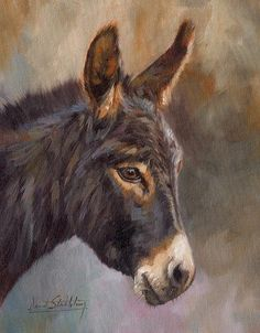 Donkey Print By David Stribbling