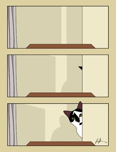 """""""Going somewhere?"""" - A Tale of Two Cats by Adam Joseph White Cats, Gatos, Cat, Kitty, Kitty Cats"""