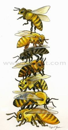 Bee Stack Art Painting Print - Wall art, totem pole, honey bee art, bee art, bee…