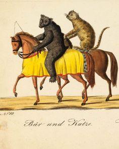 Die große öffentliche Maskerade zu Pferde und zu Wagen in Bamberg am Fastnachts-Montage in kolorirten Abbildungen dargestellt auf 28 Blättern in quer-Folio