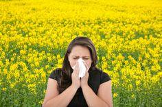 Itt a tavasz, programot tervezne a szeretteivel? Megfelelő kezeléssel szénanáthásként is felszabadultan töltheti az allergiaszezont a szabadban! http://www.patika-net.hu/egeszsegvedelem/525-a-szenanatha-ellen.html