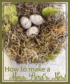 How to Make a Moss Bird's Nest - Deja Vue Designs